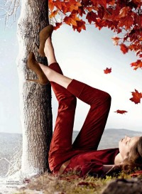 The Essentialist - Fashion Advertising Updated Daily: Hermès Ad Campaign Fall/Winter 2012/2013