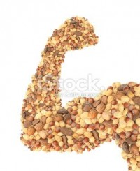 Nuts muscle food Stock Photo 18504219 - iStock