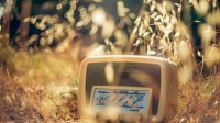 light nature vintage radio bokeh photographers Wallpaper – Computer Wallpapers