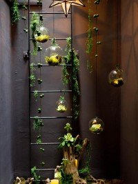 Indoor Gardening Design Ideas, Pictures, Remodel, and Decor - page 3