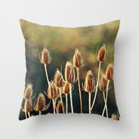Throw Pillow Case Photo by RDelean Nature Winter by RDelean