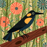 Designspiration — Bishops oo Content - Ben Newman Illustration