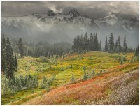 When Fall turns to Winter - Mount Rainier Nat. Park | Seasons - Fall