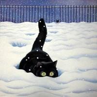 Vicky Mount | cats 2