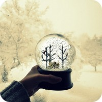snow globe!! | winter