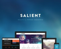 WordPress - Salient - Responsive Multi-Purpose Theme | ThemeForest