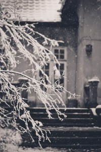 snow frosted | Romantic winter