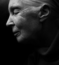 Portrait Photography by Yves Borgwardt | Photographist - Photography Blog
