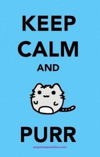 Awww | Cats