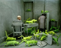 Creative Colorful Photography by Sandy Skoglund | Photographist - Photography Blog