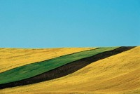 Abstract Colour Landscapes by Franco Fontana | Photographist - Photography Blog