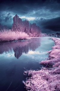 The Infrared Landscapes – Fubiz™