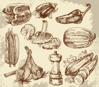 Hand Drawn Vegetables Hand Drawn Vegetables ... | Photoshop: Clipart
