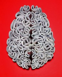 "The Economist ""Brain"" Ad by Ogilvy & Mather 
