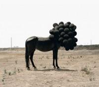 Andrea Galvani Photography – Fubiz™