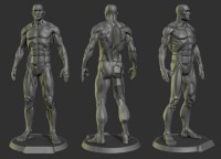 The Male Planar Statue - Polycount Forum