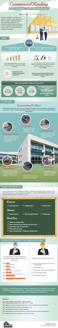 Commercial Roofing: Risks, Challenges and Proper Maintenance - Cuttingedge