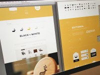 Web / Web Portfolio — Designspiration