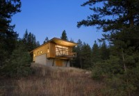 WANKEN - The Blog of Shelby White » Pine Forest Cabin