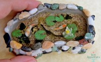 Miniature Koi Pond by Bon-AppetEats