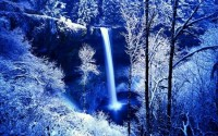 WINTER FOREST FALLS - Waterfalls Wallpaper 965711 - Desktop Nexus Nature