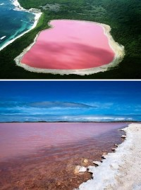 a98876_real-place_7-pink-lake.jpg (600×810)