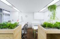 naoya-matsumoto-koshida-clinic-office-designboom01.jpg (JPEG Image, 818×533 pixels)