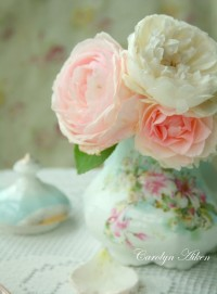 pionies! I love these! | Gardening | Pinterest