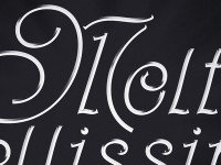 Molto Bellissima (Very Beautiful) - Italian Lettering by Kyle Kargov