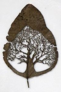 leaf art - Bing Images