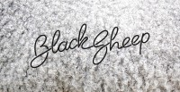 Beautiful / Black Sheep (rye-jol) — Designspiration