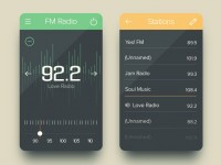 FM Radio UI | Graphical User Interface | Inspiration DE