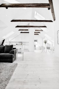 The Design Chaser: Pitched Roofing + Wooden Beams