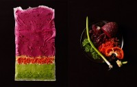 Food as Art: Beautiful Compositions by Charlotte Omnes and Beth Galton