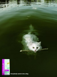 Eukanuba ad » adverbox