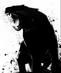 Noir Series by Sit Haiiro   Inspiration DE