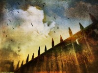 Architecture | Art prints on metal by Ally Coxon