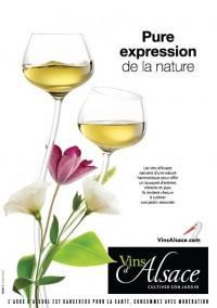 Famous savoure le vin d'Alsace - MARQUE - l'ADN