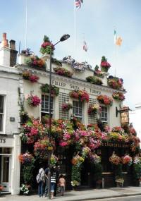 notting hill, london   Florals   Pinterest