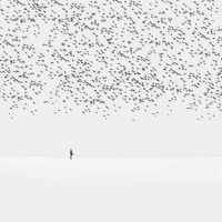 Surreal Photography by Hossein Zare | Photographist - Photography Blog