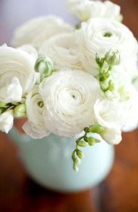 White Ranunculus | For the Home | Pinterest