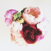 peonies. | Flowers | Pinterest