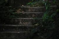 500px / ...steps..??, Hongkong... by c_chan