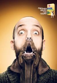 Pedigree Dentastix Fresh: The freshest dog breath, Benny   Ads of the World™