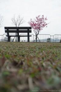 ??????? | Flickr - Photo Sharing!