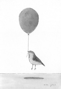 Piccsy :: Balloon Bird