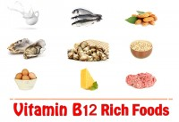 Top 15 Vitamin B12 Rich Foods To Include In Your Diet