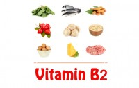 Top 10 Vitamin B2 Rich Foods To Include In Your Diet | Health Beckon