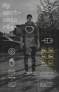 Anatomic résumé | Inspiration DE