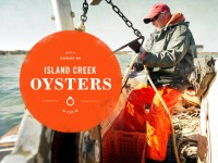 Oat :: Creative Design :: Island Creek Oysters